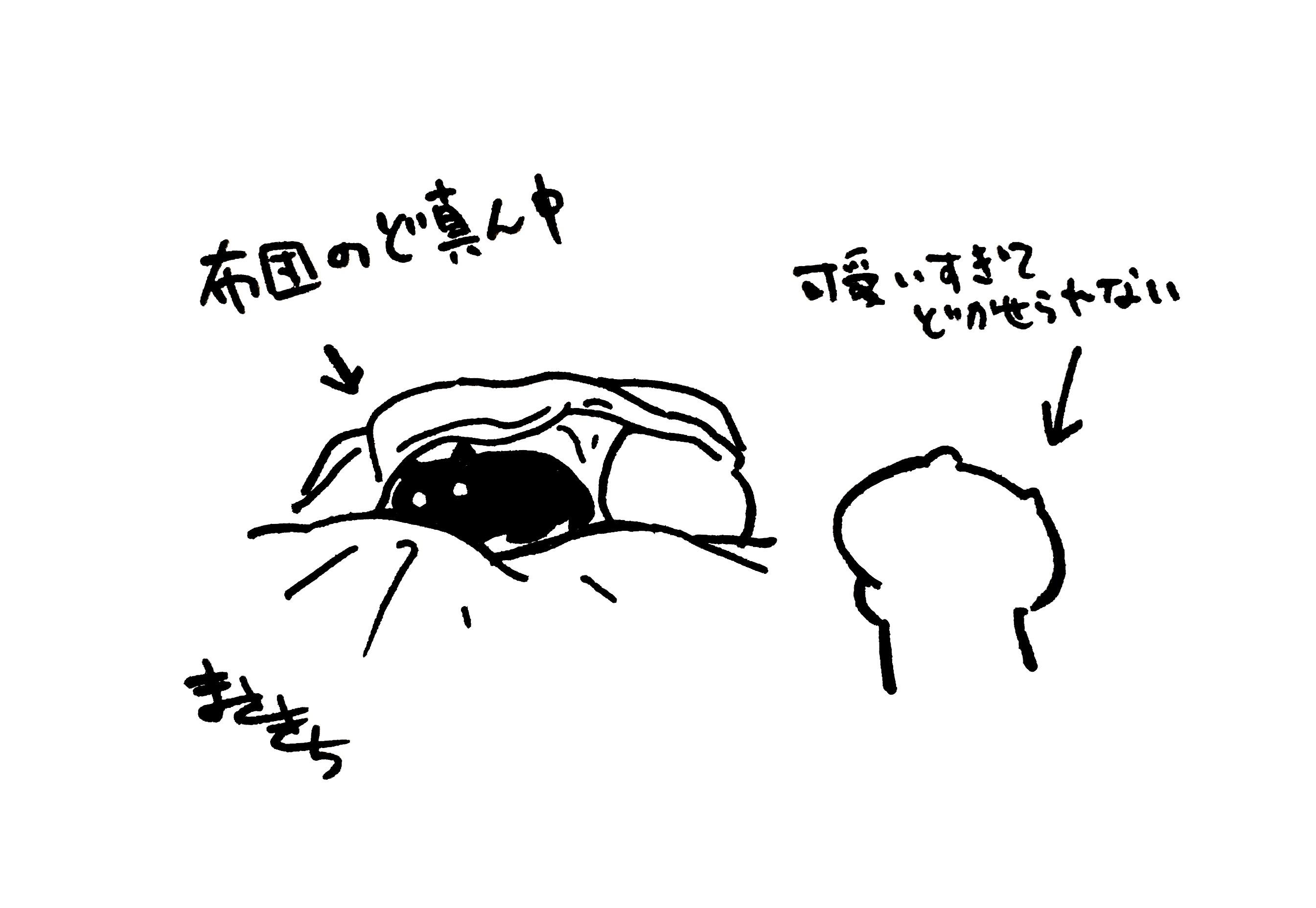 f:id:miyamasaki:20171202030848j:image