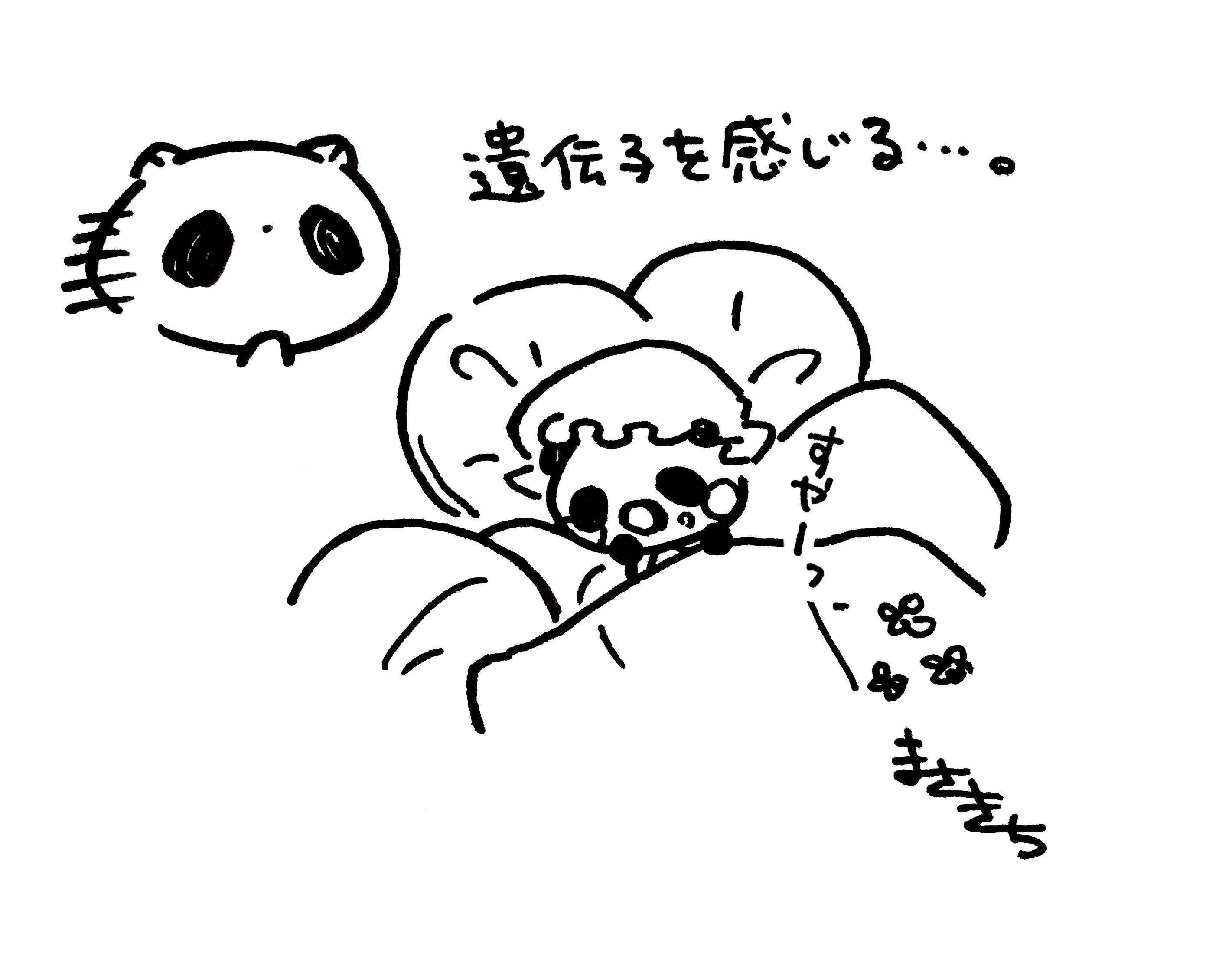 f:id:miyamasaki:20171208231808j:image