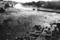 1985年8月 水俣港