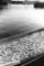 1983年12月 コノシロ