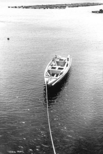 1988年6月 常世の舟