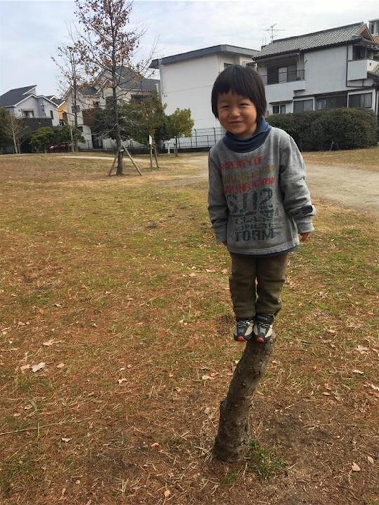 f:id:miyanotakashi:20170403101704j:image