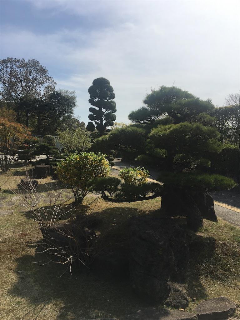 f:id:miyanotakashi:20170417184454j:image