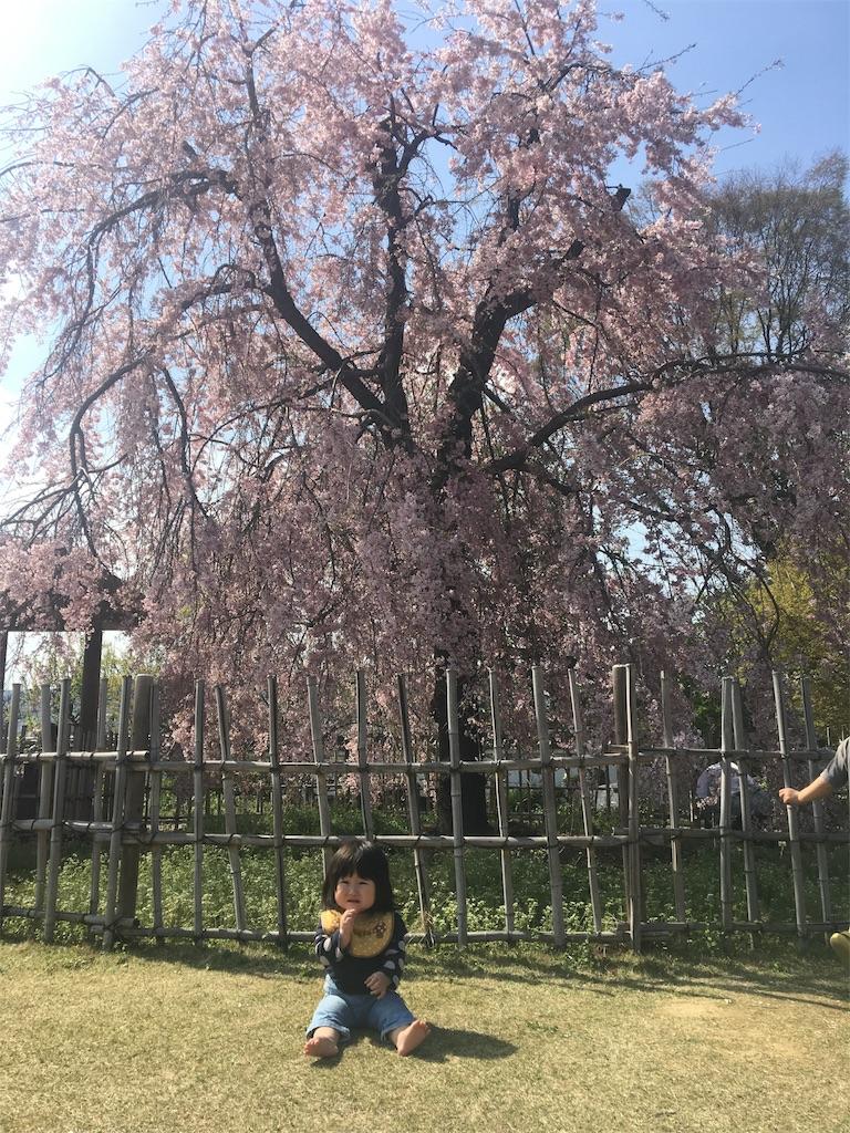 f:id:miyanotakashi:20170417184527j:image