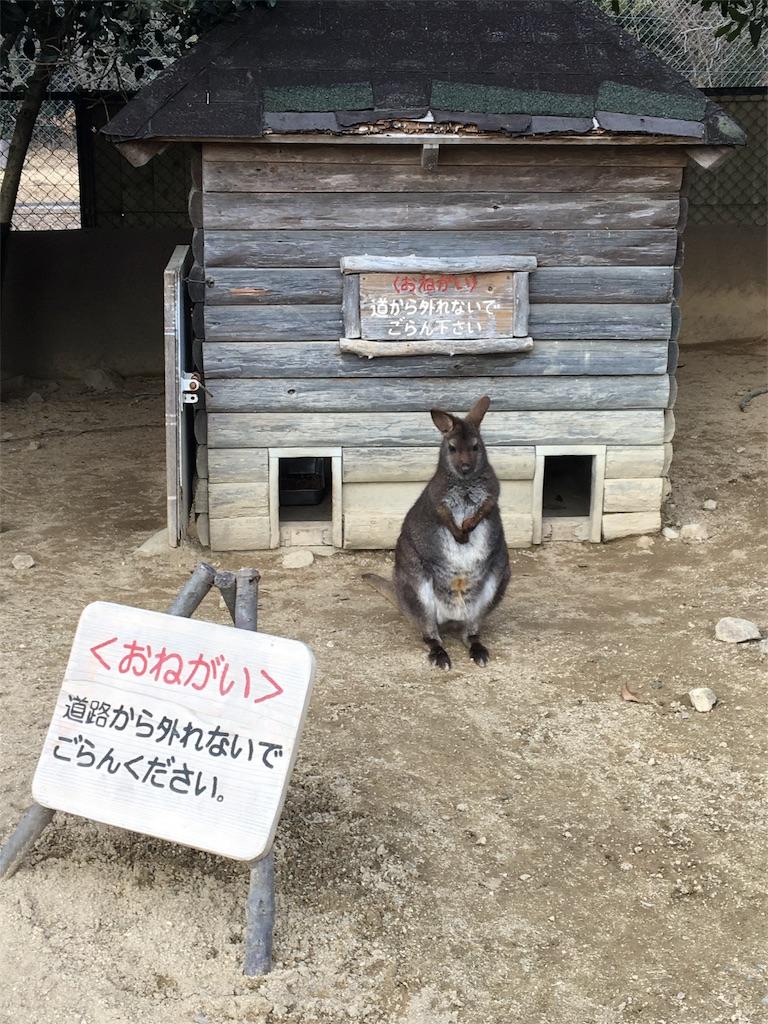 f:id:miyanotakashi:20180219125951j:image