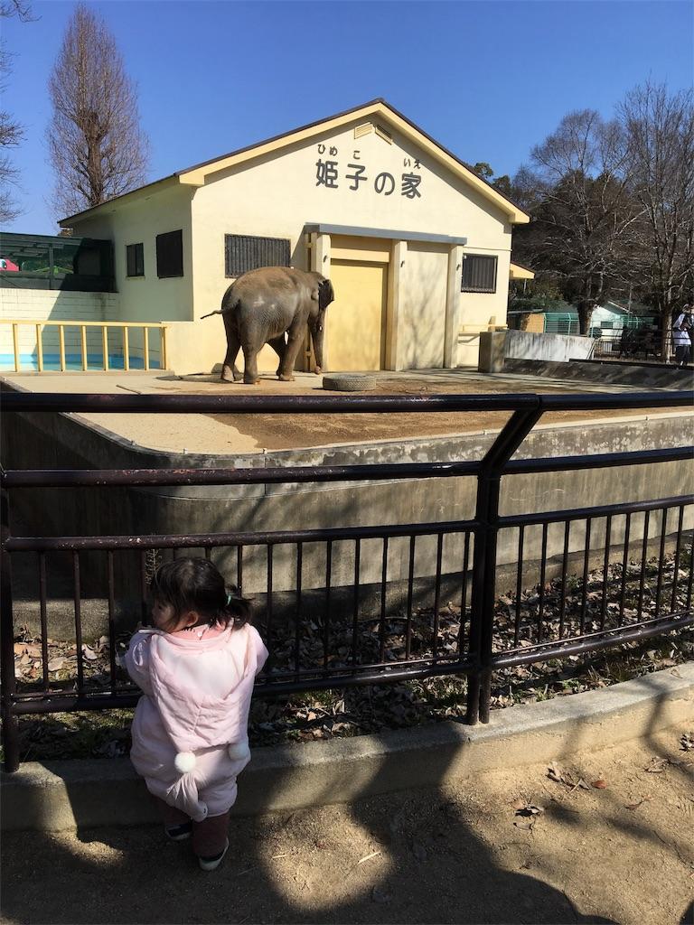 f:id:miyanotakashi:20180221133921j:image