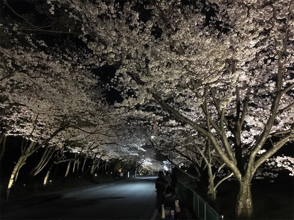 f:id:miyanotakashi:20180329063423j:image