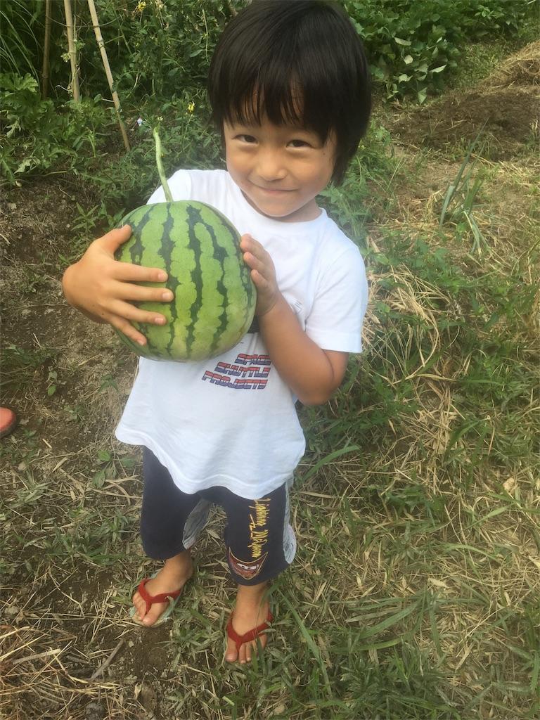 f:id:miyanotakashi:20180901174910j:image