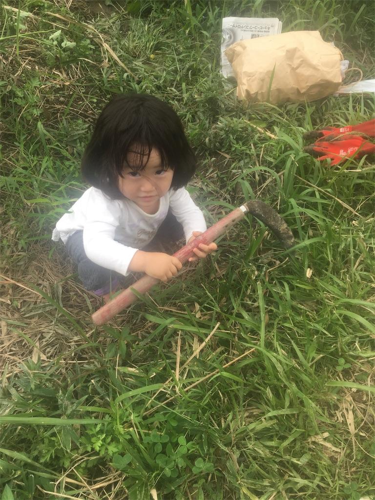 f:id:miyanotakashi:20180919065358j:image