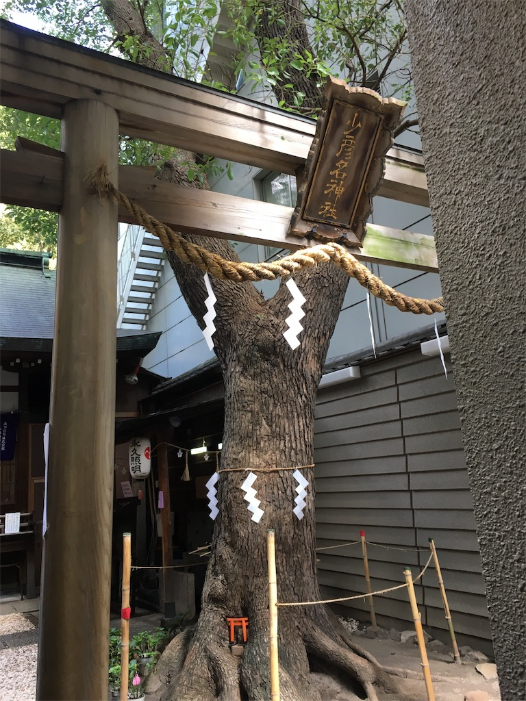 f:id:miyanotakashi:20190918163057j:image