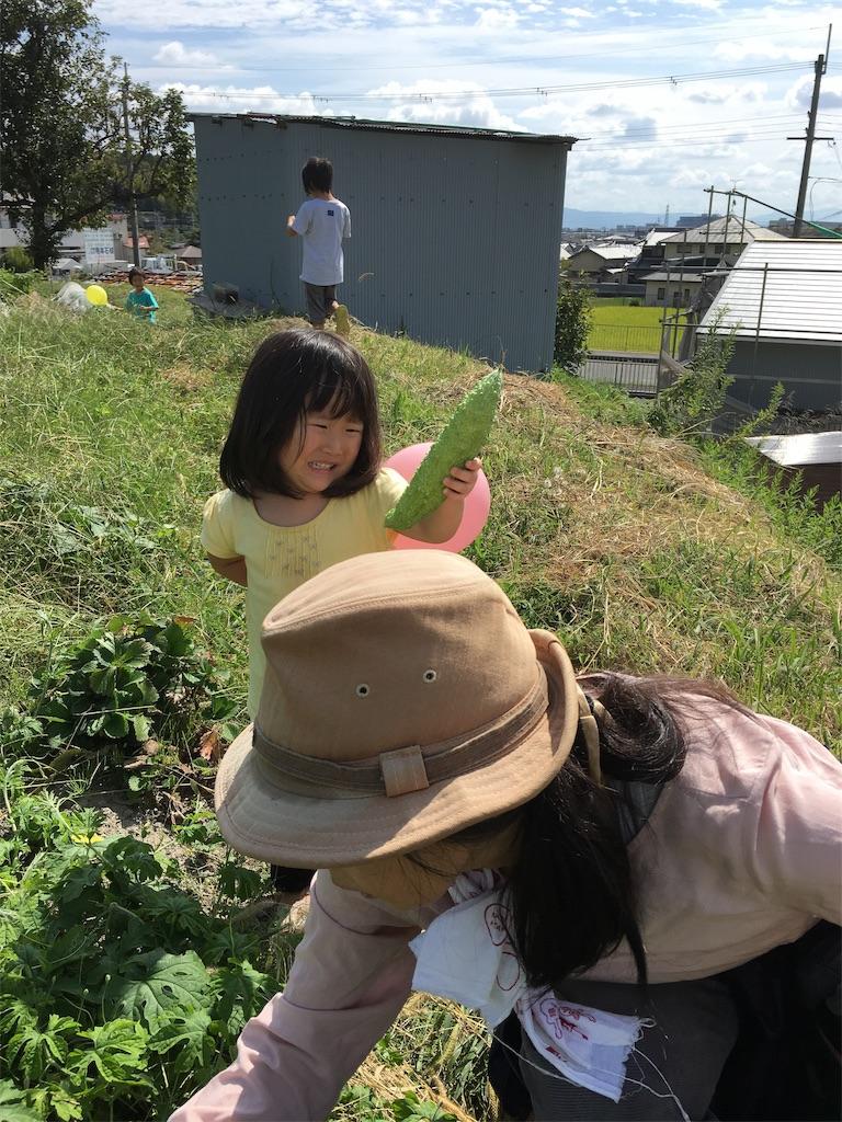 f:id:miyanotakashi:20190930062344j:image