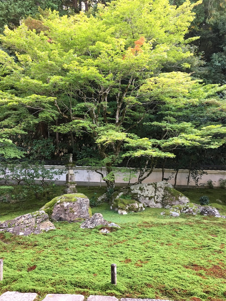 f:id:miyanotakashi:20191128082550j:image