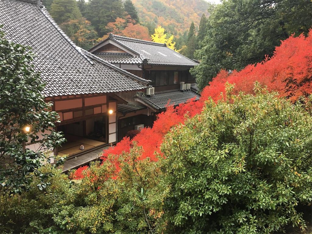 f:id:miyanotakashi:20191128084640j:image