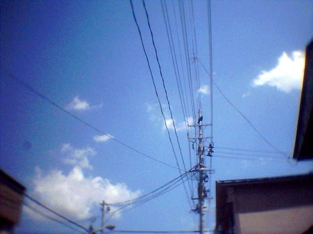 f:id:miyashima:20120526134248j:image:w360:left