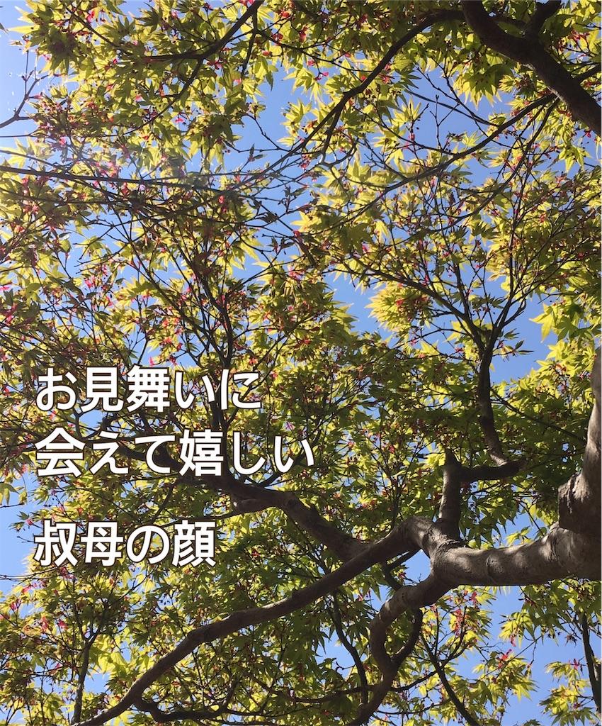 f:id:miyashita03nami08:20190404205225j:image
