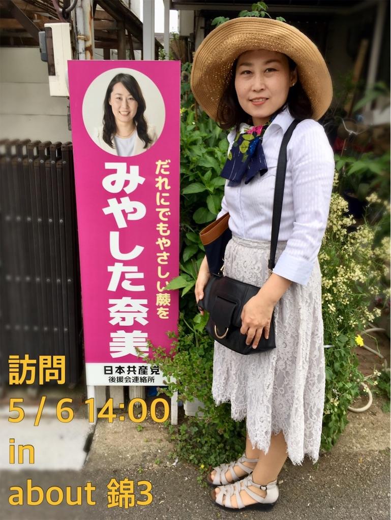 f:id:miyashita03nami08:20190506210719j:image