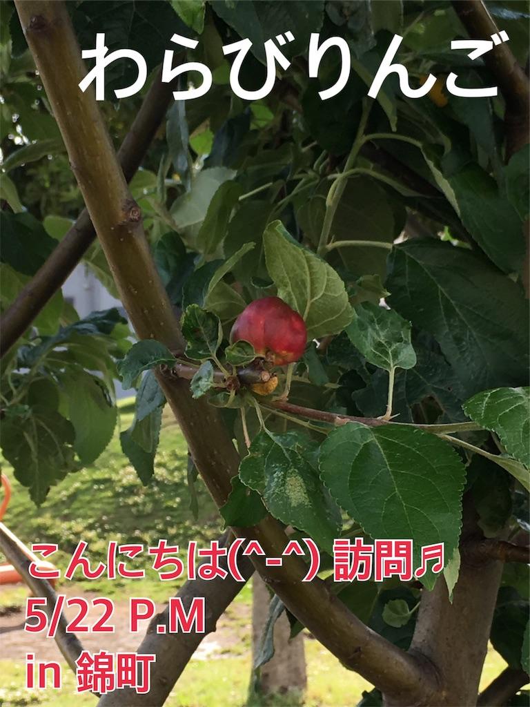 f:id:miyashita03nami08:20190522214141j:image