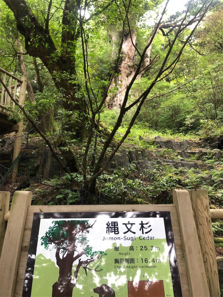 f:id:miyasho-co:20200823092327j:image