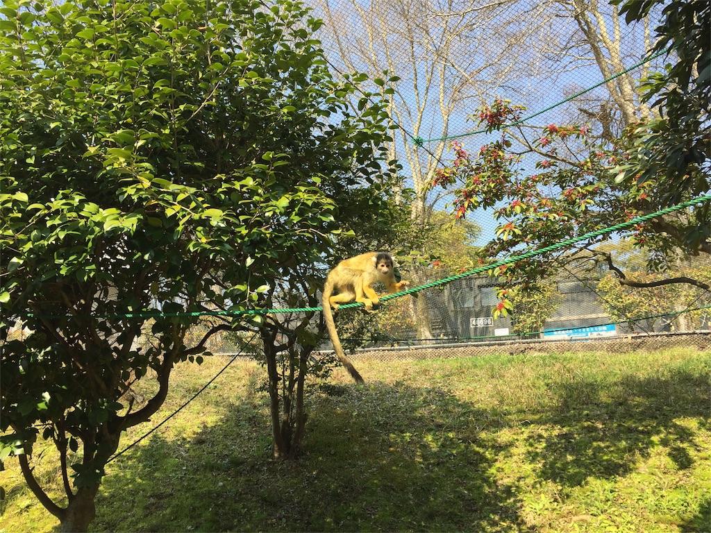 f:id:miyavi-worker:20170321111152j:image