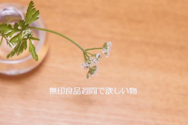 f:id:miyaweblog:20170309164415j:plain