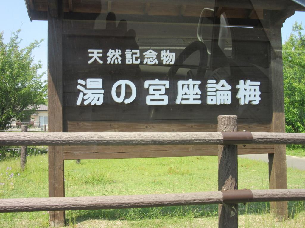 f:id:miyazaki_tomo:20170501110314j:plain
