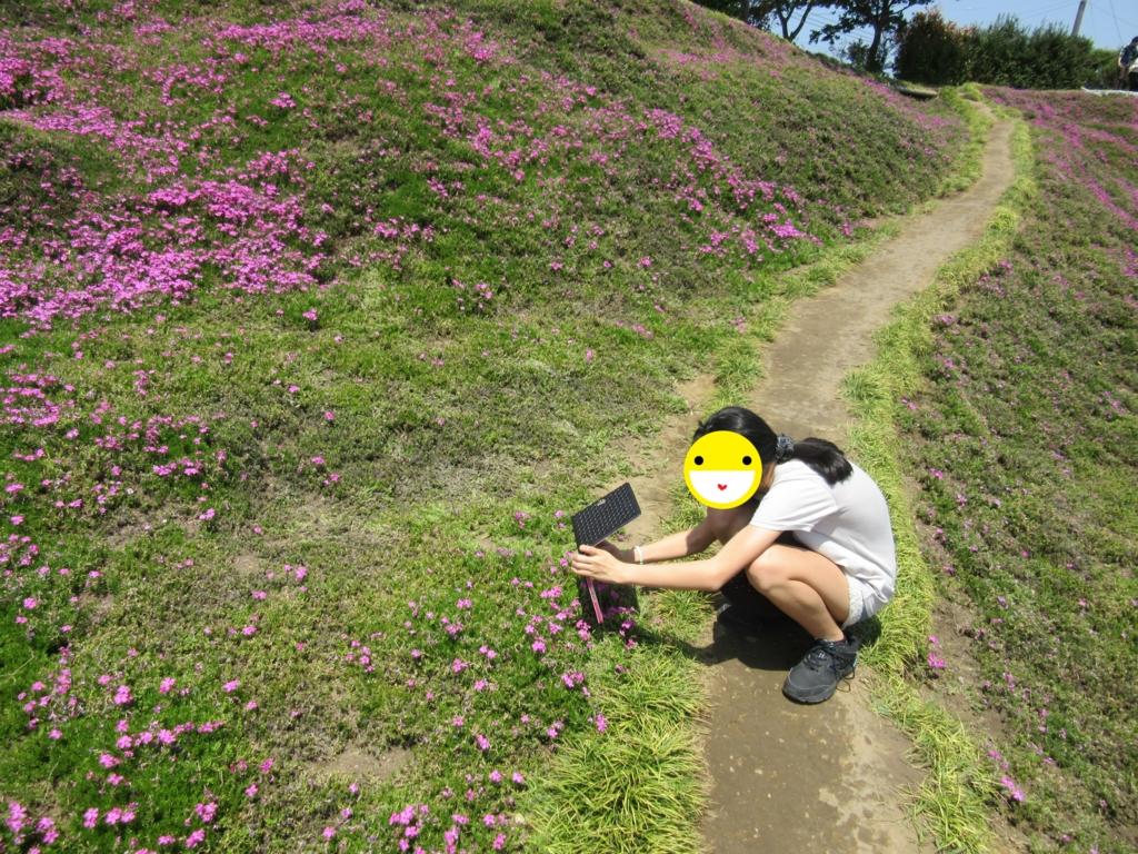 f:id:miyazaki_tomo:20170501114937j:plain