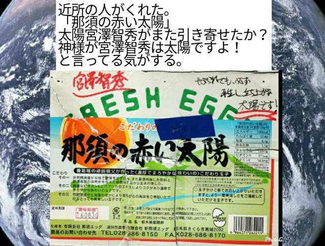 f:id:miyazawatomohide:20200604015518j:image