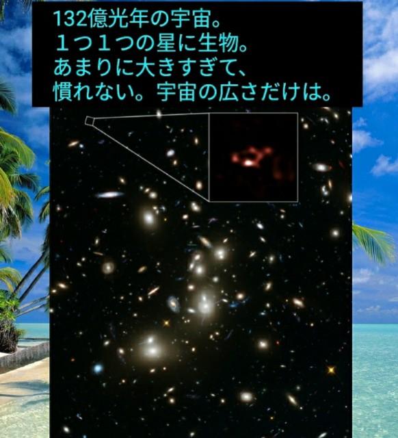 f:id:miyazawatomohide:20200604090349j:image