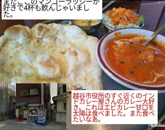 f:id:miyazawatomohide:20200610013252j:image