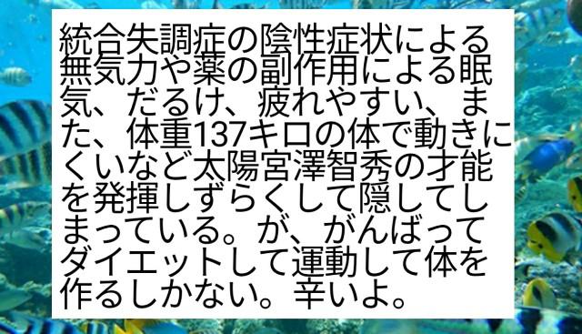 f:id:miyazawatomohide:20200612191040j:image