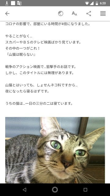f:id:miyazawatomohide:20200701033447j:image