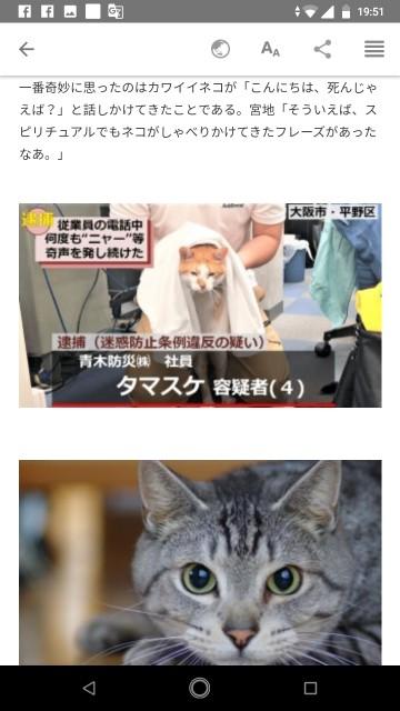 f:id:miyazawatomohide:20200703200403j:image