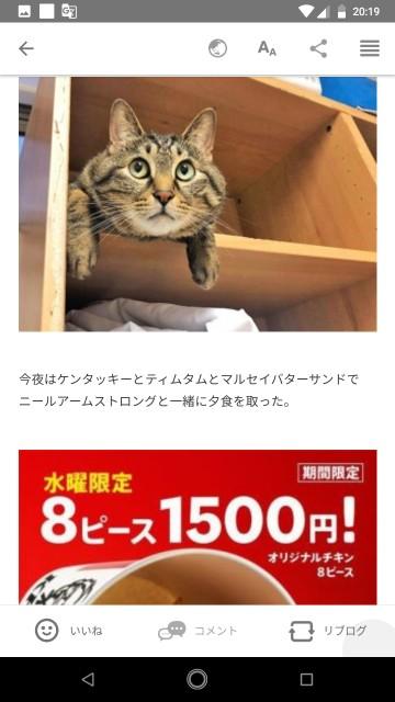 f:id:miyazawatomohide:20200703204230j:image