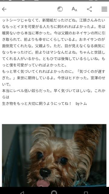 f:id:miyazawatomohide:20200704120709j:image