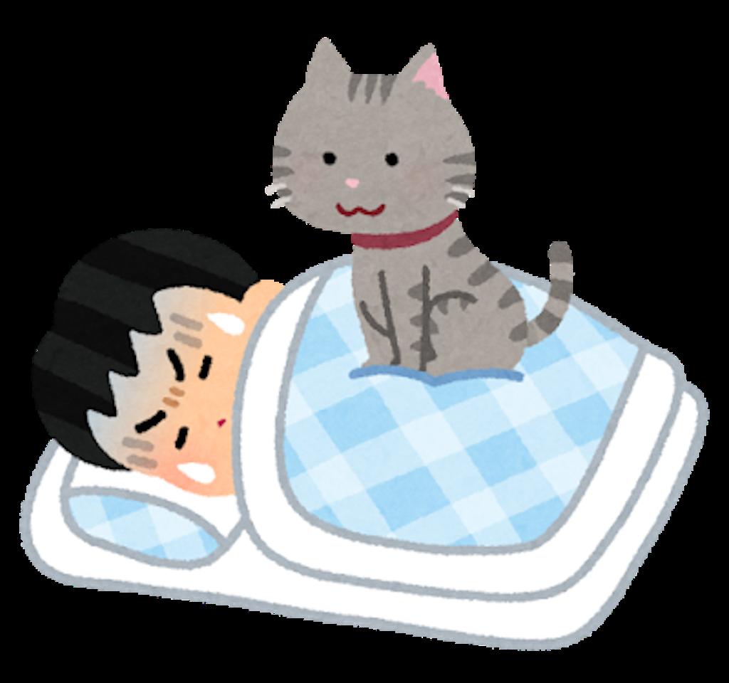 f:id:miyazono-9ran:20190402081735p:image