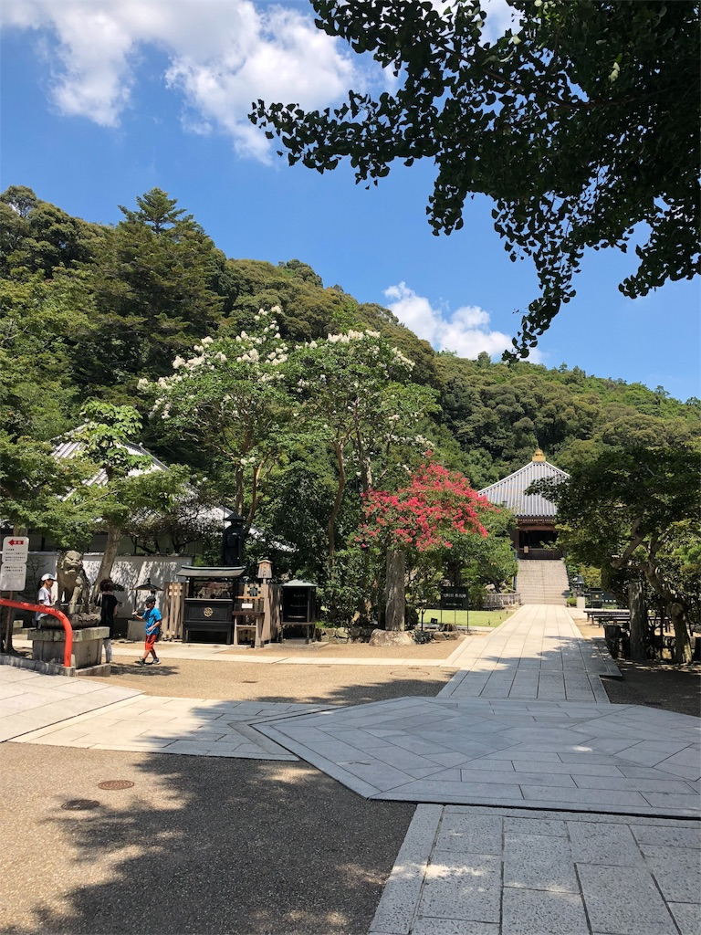 f:id:miyazono-9ran:20190810175414j:image
