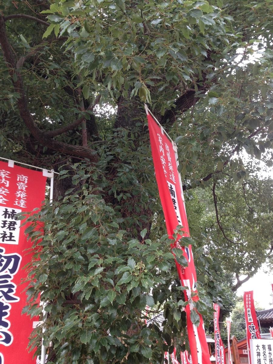 楠と初辰参りと書かれた赤い幟