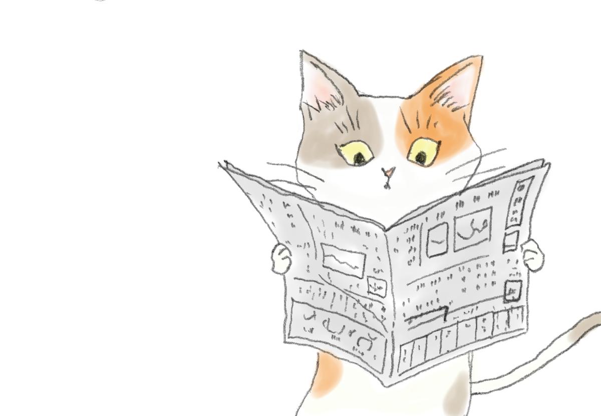 新聞を読んでいる三毛猫