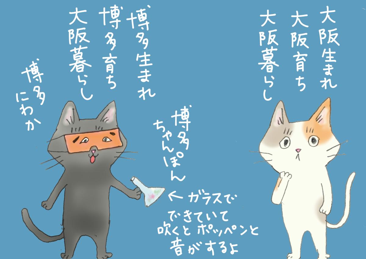 博多生まれの猫と大阪生まれの猫が並んでいる