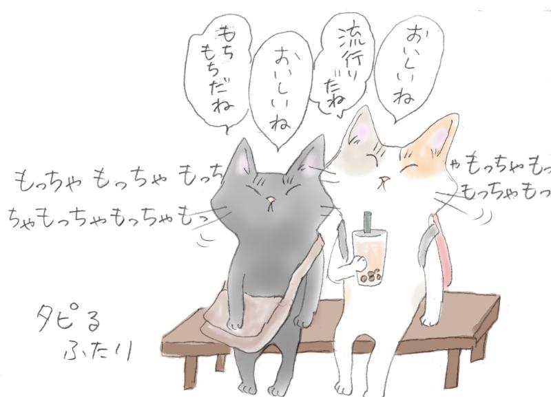 ベンチに座ってタピオカミルクティーを飲む2匹の猫