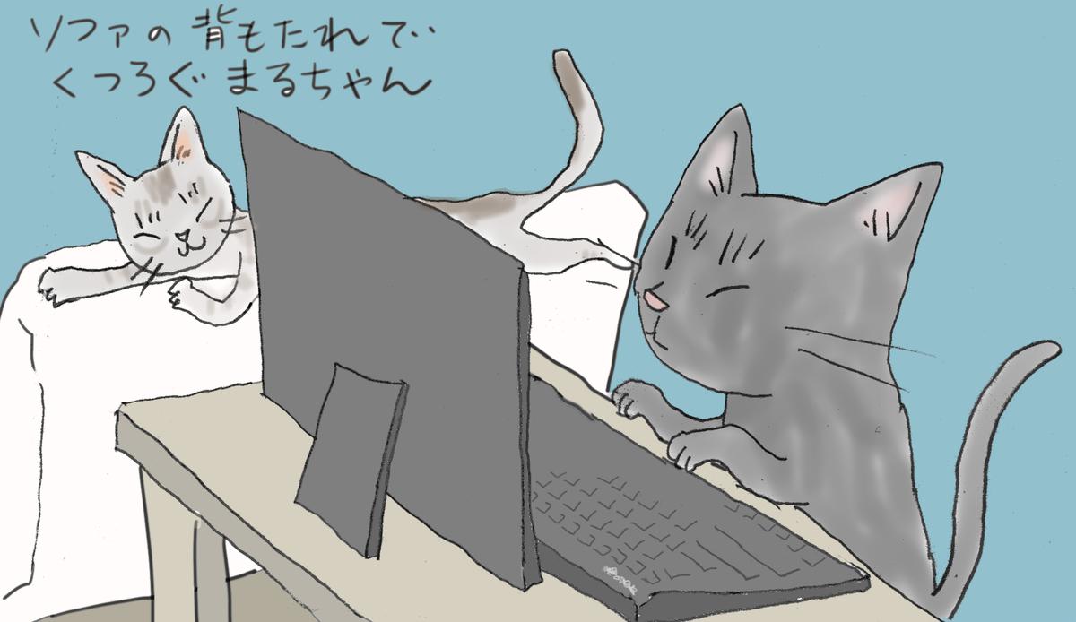 黒猫のきーちゃんがパソコンするのを飼い猫のまるちゃんが眺めている