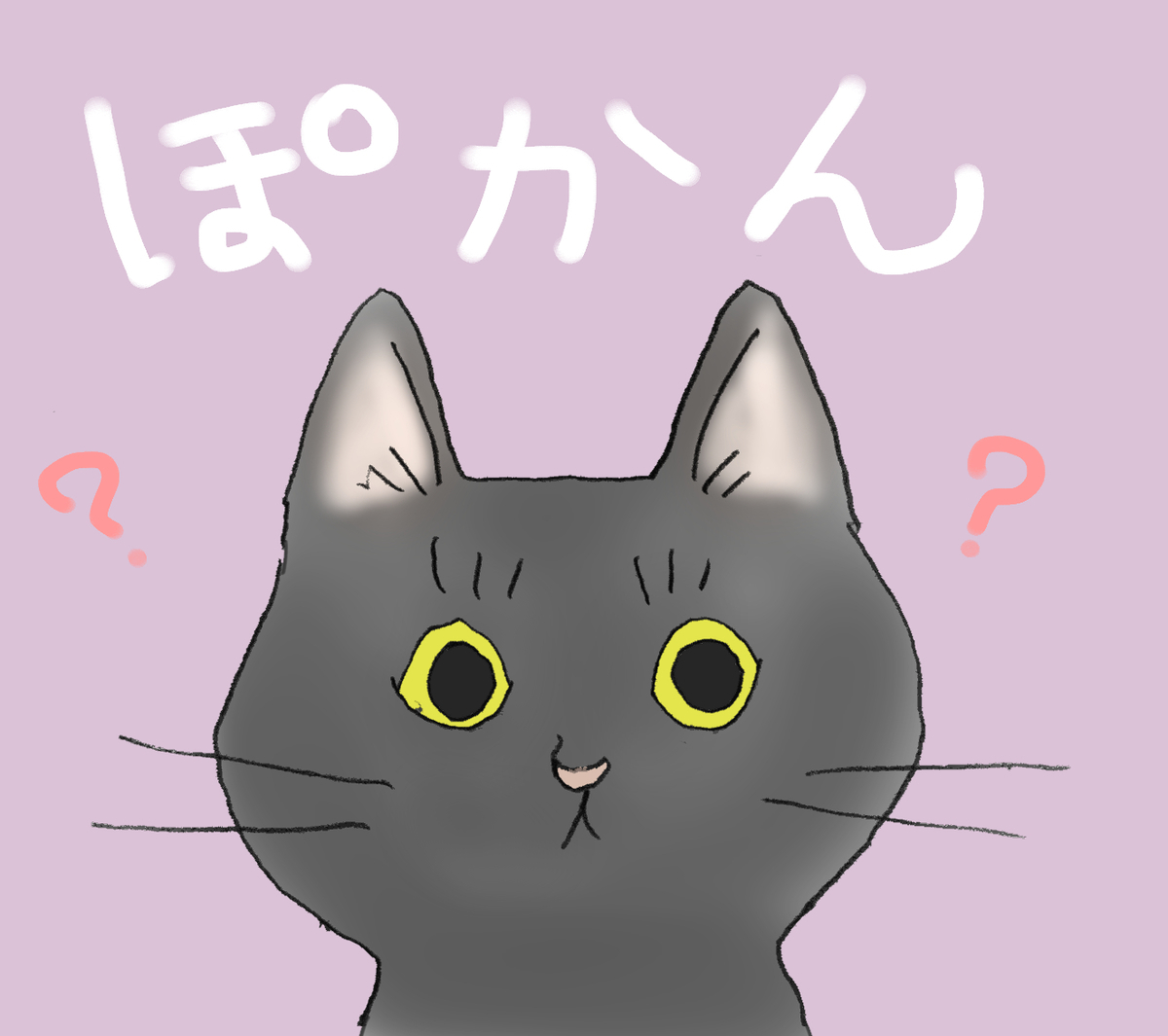 ポカンとした顔の黒猫