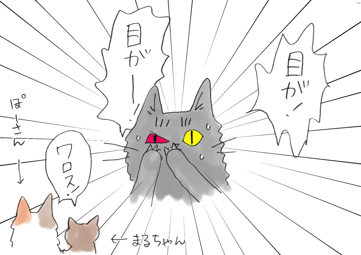 右目が真っ赤になって「目が!」と叫んでいる猫を「ワロス」といって眺めている猫2匹の絵