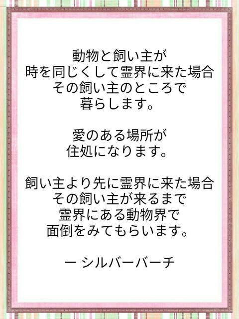f:id:miyoshi71:20190802084835j:image