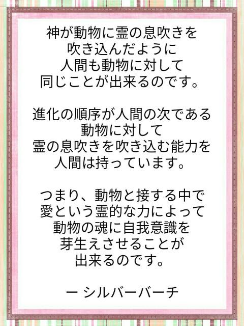 f:id:miyoshi71:20190805112813j:image
