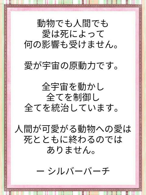 f:id:miyoshi71:20190808110519j:image