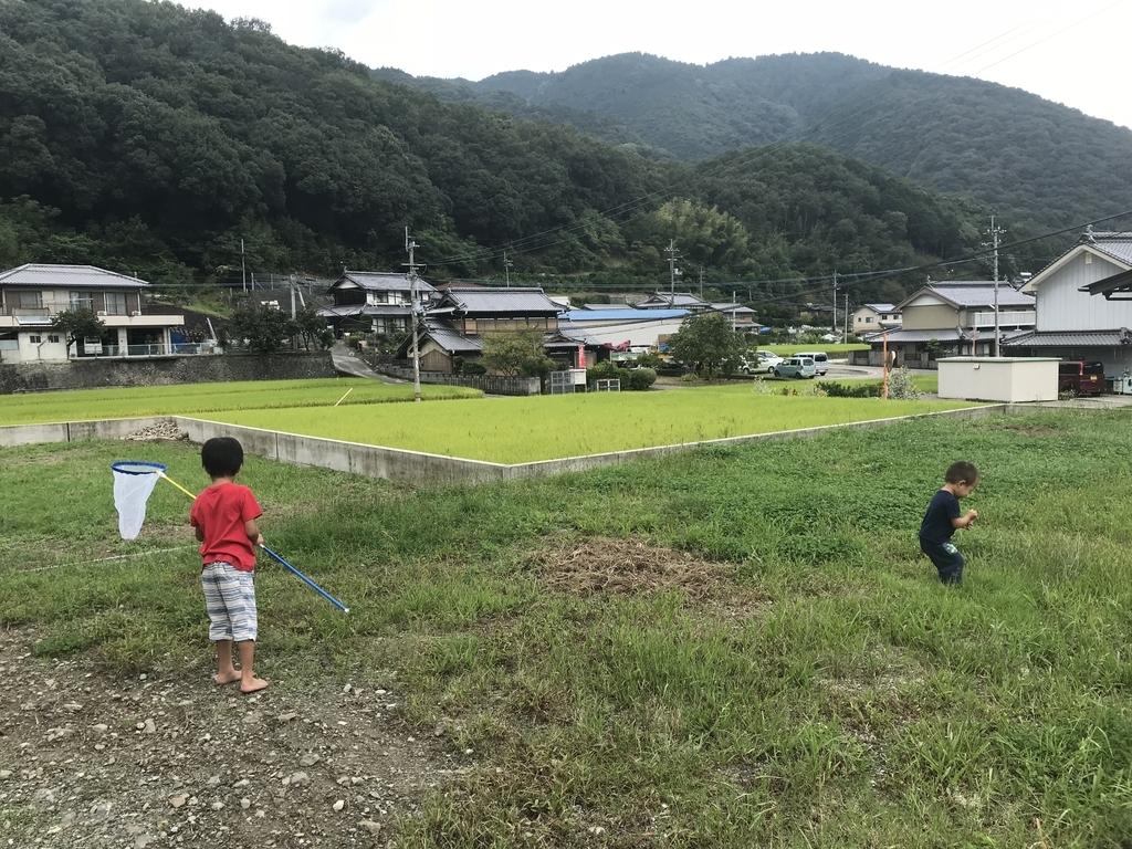 f:id:miyoshi_cnt:20180921144945j:plain