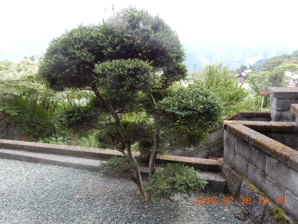 f:id:miyoshi_s:20160730141811j:plain