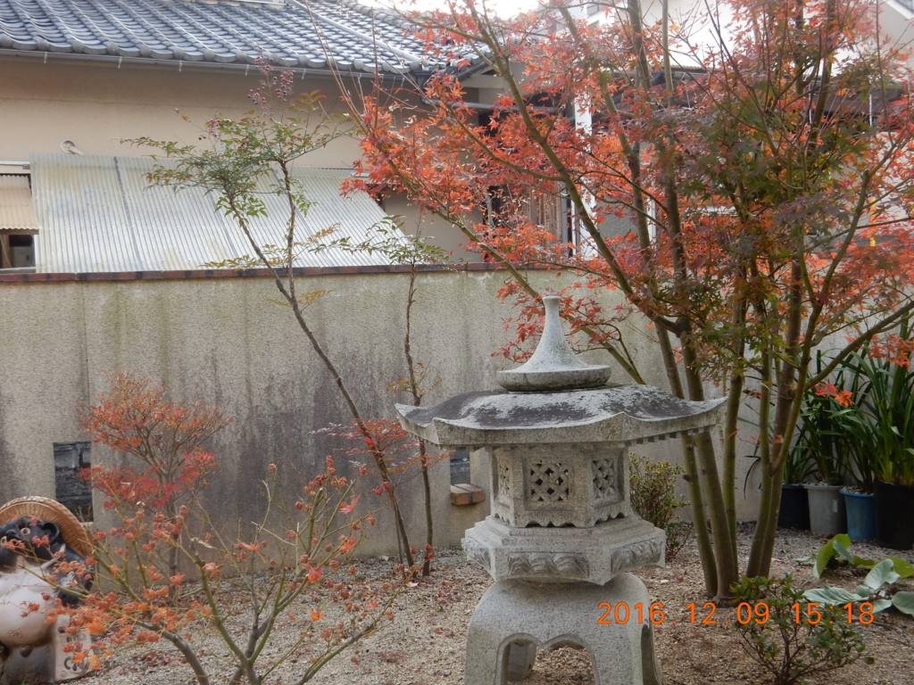 f:id:miyoshi_s:20161209151849j:plain