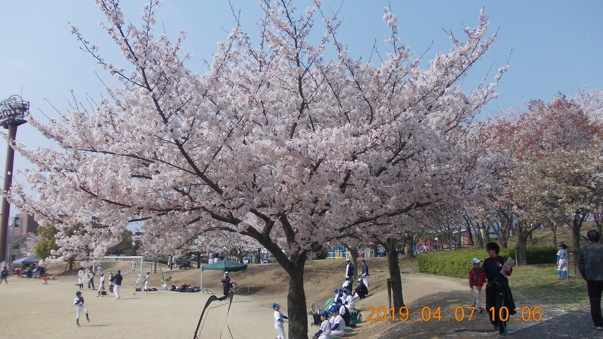 f:id:miyoshi_s:20190407100626j:plain